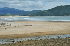 Waikawau Bay on Coromandel Peninsula Royalty Free Stock Photography
