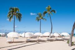 Free Waikiki Beach Royalty Free Stock Images - 31948259