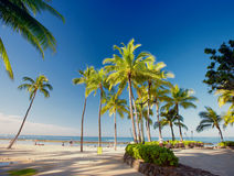 Waikiki Beach early morning - Honolulu, Hawaii Stock Images