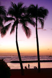 Waikiki beach. Honolulu, Oahu. Hawaii. Royalty Free Stock Photo