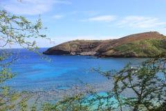 Waikiki, Hawaï, bergen en stranden royalty-vrije stock afbeelding