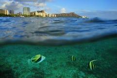 Waikiki, Oahu, Havaí Fotografia de Stock Royalty Free