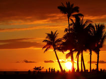 Waikiki solnedgång Fotografering för Bildbyråer