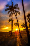 Waikiki Sonnenuntergang lizenzfreie stockfotos