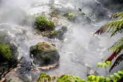 Waikite hot stream and terraces, volcanic valley stock images