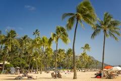 Waikki海滩,檀香山,夏威夷 库存照片