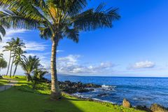 Wailea Makena Beach i Maui, Hawaii, USA Royaltyfri Bild