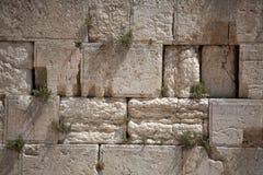 Wailing wall Stock Image