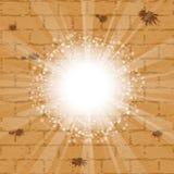 Wailing wall Royalty Free Stock Image