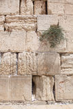 The Wailing Wall, Jerusalem, Israel Royalty Free Stock Photos