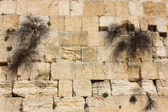 Wailing Wall in Jerusalem, Israel Royalty Free Stock Image