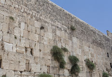 The Wailing Wall Stock Images