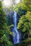 Wailua瀑布,毛伊,夏威夷 库存图片