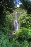 Wailua cade (Maui, le Hawai) Fotografia Stock