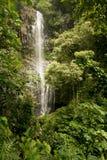 Wailua cade sulla strada a Hana in Maui Fotografie Stock Libere da Diritti