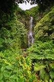 Wailua falls in east Maui Stock Images