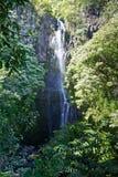 Wailua Falls Royalty Free Stock Photo