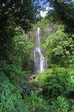 Wailua Falls (Maui, Hawaii) Stock Photo