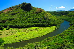 Wailua Fluss, Kauai Hawaii Stockbilder