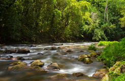 Wailua River Kauai, Hawaii. Downstream from Wailua Falls in Kauai, Hawaii Royalty Free Stock Image