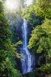 Wailua vattenfall, Maui, Hawaii Arkivbilder