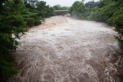 Wailuku河在Hilo 免版税库存照片