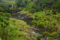 Wailuku flod Arkivfoto