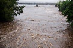 Wailuku flod i Hilo Arkivbild