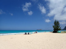 Waimanalo strand Arkivbilder