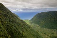Waimanu Valley, Big Island, Hawaii Royalty Free Stock Images