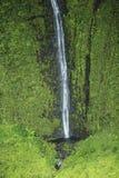 Waimea峡谷瀑布,考艾岛 免版税库存图片