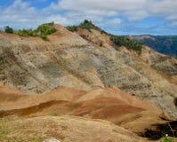 Waimea峡谷看法从监视的 图库摄影