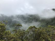 Waimea峡谷雾在Kokee国家公园 库存照片
