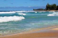 Waimea海湾 库存图片