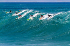 Waimea海湾HI,乘波浪的冲浪者 免版税库存照片