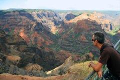 waimea каньона Стоковые Фотографии RF