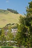 waimea холмов Стоковые Изображения RF