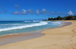 Waimea Bay Beach Royalty Free Stock Photos