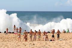 Waimea bay explosion Royalty Free Stock Image