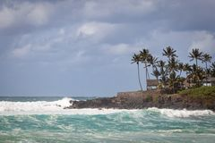 Waimea Bay Seascape with Palm Trees. Cloudy sky, and rough waves from the pacific ocean royalty free stock images
