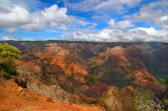 Waimea Canyon. On the island of Kauai, Hawaii Royalty Free Stock Photo