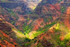 Waimea Canyon. Looking into Waimea Canyon on the island of Kauai, Hawaii Stock Images