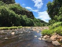 Waimea Canyon In Summer On Kauai Island In Hawaii. Stock Image