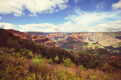 Waimea canyon. Kauai,Hawaii Stock Photos