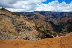 Waimea Canyon, Kauai, Hawaii. This is a picture of the majestic Waimea Canyon, Kauai, Hawaii. Also known as the Grand Canyon of the Pacific Royalty Free Stock Photography