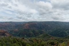 Waimea Canyon on Kauai, Hawaii, in winter after a major rainstorm. The dirt is all soaked and has the deep rich red coloring Royalty Free Stock Photography