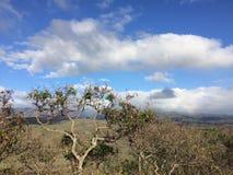Waimea Canyon on Kauai Island, Hawaii. Royalty Free Stock Photography