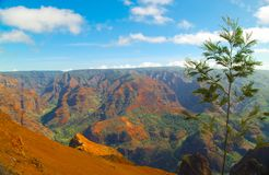 Waimea Canyon Kauai. Kauai Waimea Canyon, also called the Grand Canyon of the Pacific, is a large canyon, approximately ten miles long and up to 3,000 feet deep Stock Image