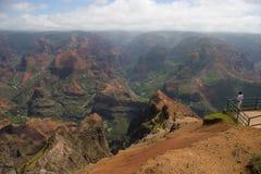 Waimea Canyon Lookout Point Royalty Free Stock Photo