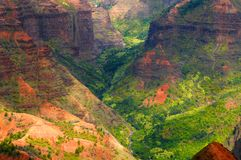 Waimea Canyon valley. Deep in the gorge of Waimea Canyon on the island of Kauai, Hawaii Royalty Free Stock Photography